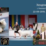 Хендлинг семинар с Анелия Шанкова-Петкова – 22.09.2019