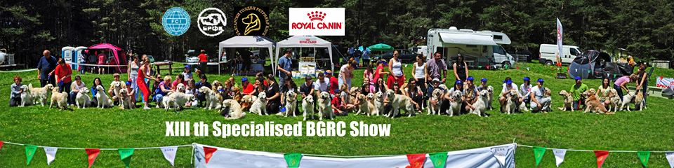 XIII-th Specialised Bulgarian Golden Retriever Club Show