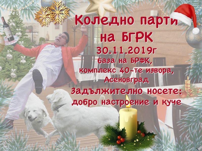 Коледно парти на БГРК